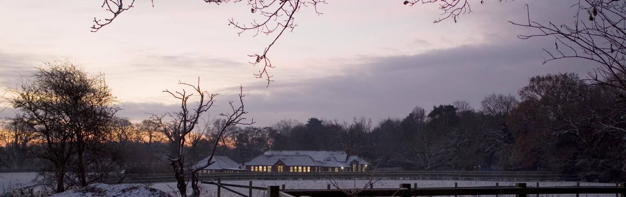 school at dawn scaled